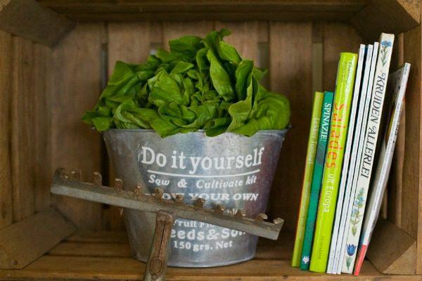 Sla en kookboeken om zelf groenten te planten