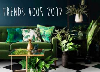 Wat zijn de trends voor 2017?