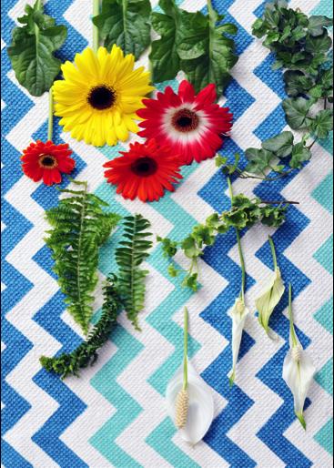 Zuiver groen woonplant oktober 2017 bloemen