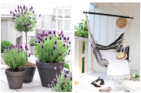 Maak je tuin of balkon klaar voor het voorjaar